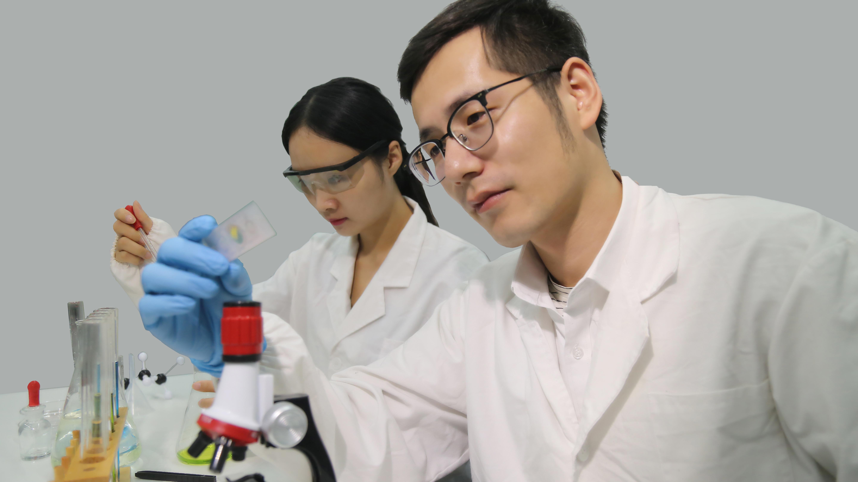 日立产品中标哈师大透射电镜采购项目